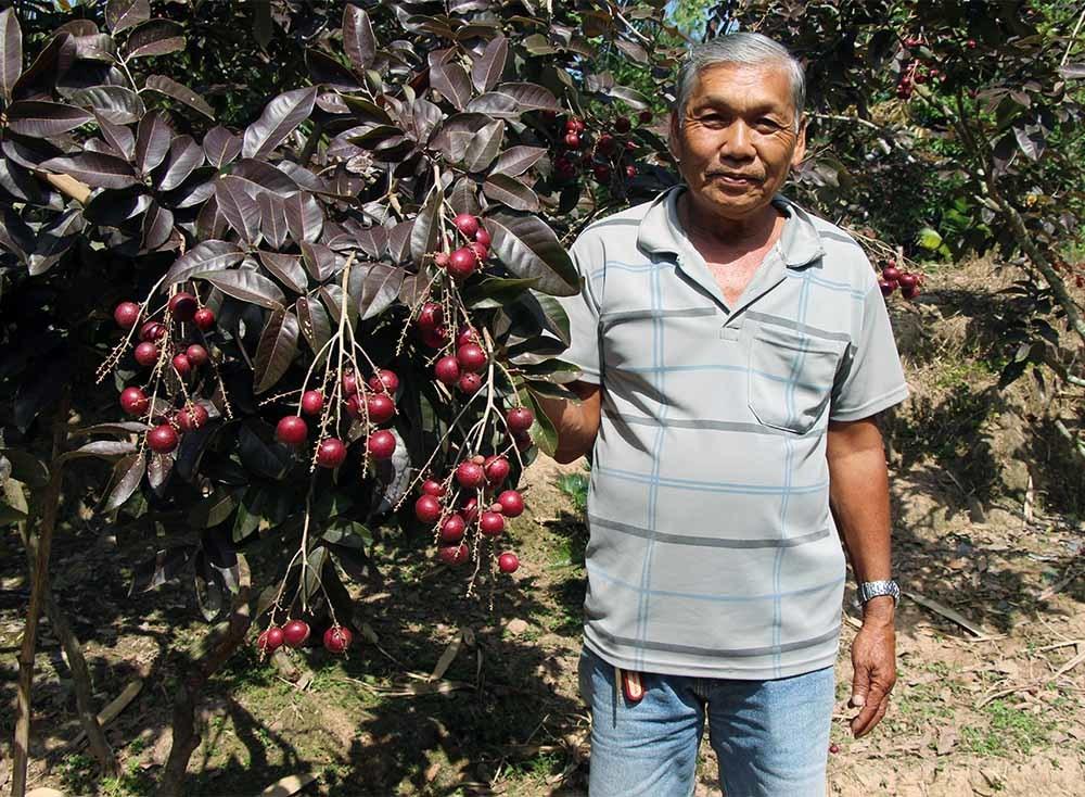 Lão nông từ chối Trung Quốc: Đặc sản phải để dân Việt ăn Tết-1