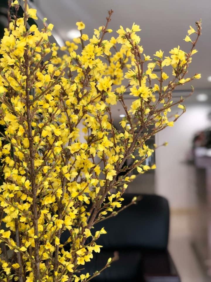 Cành hoa cây dại bên tây, đại gia Việt bỏ chục triệu chơi Tết-3