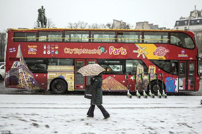 Paris đón tuyết đầu mùa sau nhiều tuần căng thẳng: Kẻ lãng mạn xuống phố, người cô đơn chống chọi giá rét-3