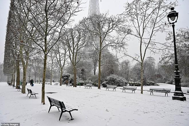 Paris đón tuyết đầu mùa sau nhiều tuần căng thẳng: Kẻ lãng mạn xuống phố, người cô đơn chống chọi giá rét-4
