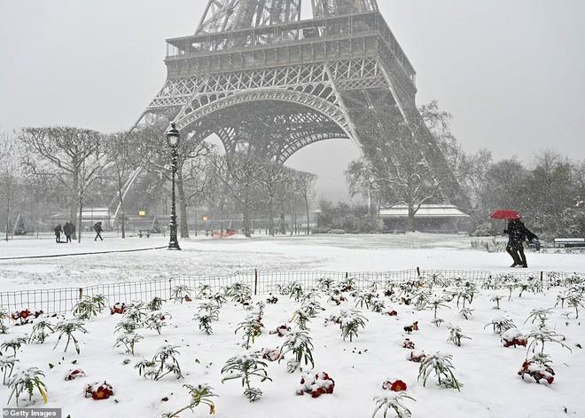 Paris đón tuyết đầu mùa sau nhiều tuần căng thẳng: Kẻ lãng mạn xuống phố, người cô đơn chống chọi giá rét-5