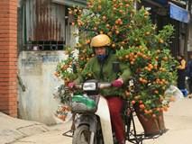 Bao tải đất bí ẩn, độc chiêu kiếm 1 triệu/ngày của bác xe ôm Nhật Tân