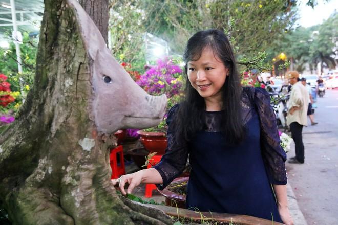 Cận cảnh cây khế đầu heo có giá nửa tỷ đồng được bày bán thu hút người dân Sài Gòn-15