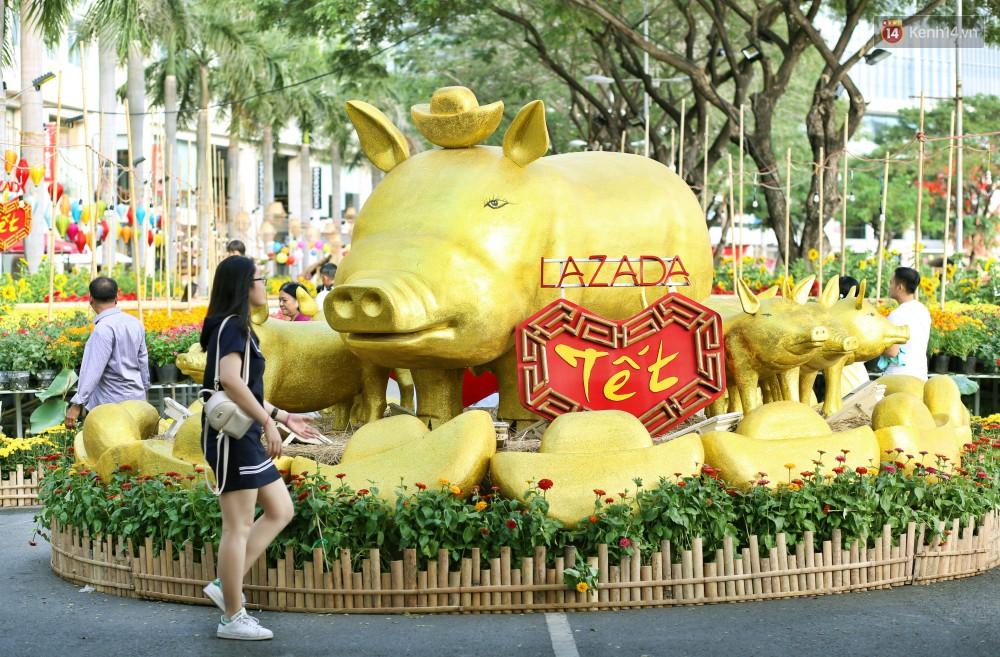 Ngắm đàn lợn với biểu cảm buồn cả thế giới ngộ nghĩnh và hài hước trên đường hoa xuân quận 7-2