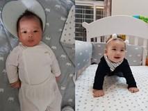 Chào đời năm 2018, những cậu ấm cô chiêu con nhà hotgirl - hotboy Việt gây sốt vì nhìn bé nào cũng đáng yêu