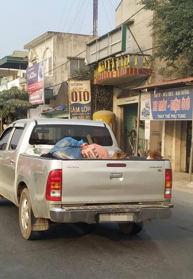 Chuyến xe chở cả quê hương quay lại thành phố sau Tết khiến nhiều người bật cười-5