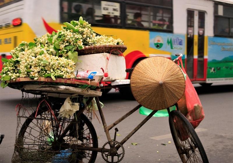 Đào phai, mai tàn, dân Hà thành chơi hoa bày đĩa nửa triệu/kg-4
