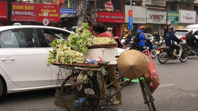 Đào phai, mai tàn, dân Hà thành chơi hoa bày đĩa nửa triệu/kg-7