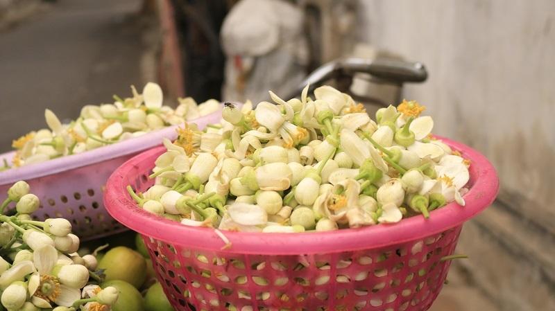 Đào phai, mai tàn, dân Hà thành chơi hoa bày đĩa nửa triệu/kg-8