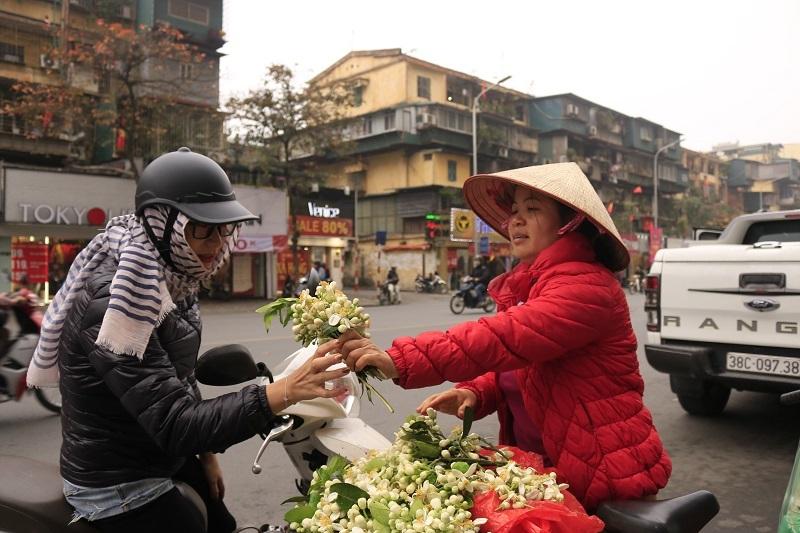 Đào phai, mai tàn, dân Hà thành chơi hoa bày đĩa nửa triệu/kg-10