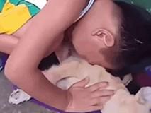 Cậu bé khóc nức nở, tìm mọi cách gọi chú chó đã chết dậy - khoảnh khắc gây xúc động mạnh