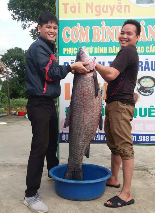 Bắt được cá trắm khủng nặng 33kg, dài gần 1m hiếm có-1
