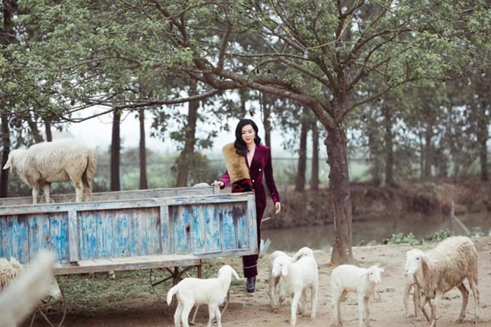 Hoa hậu Đền Hùng Giáng My bình yên vui đùa cùng đàn cừu-2