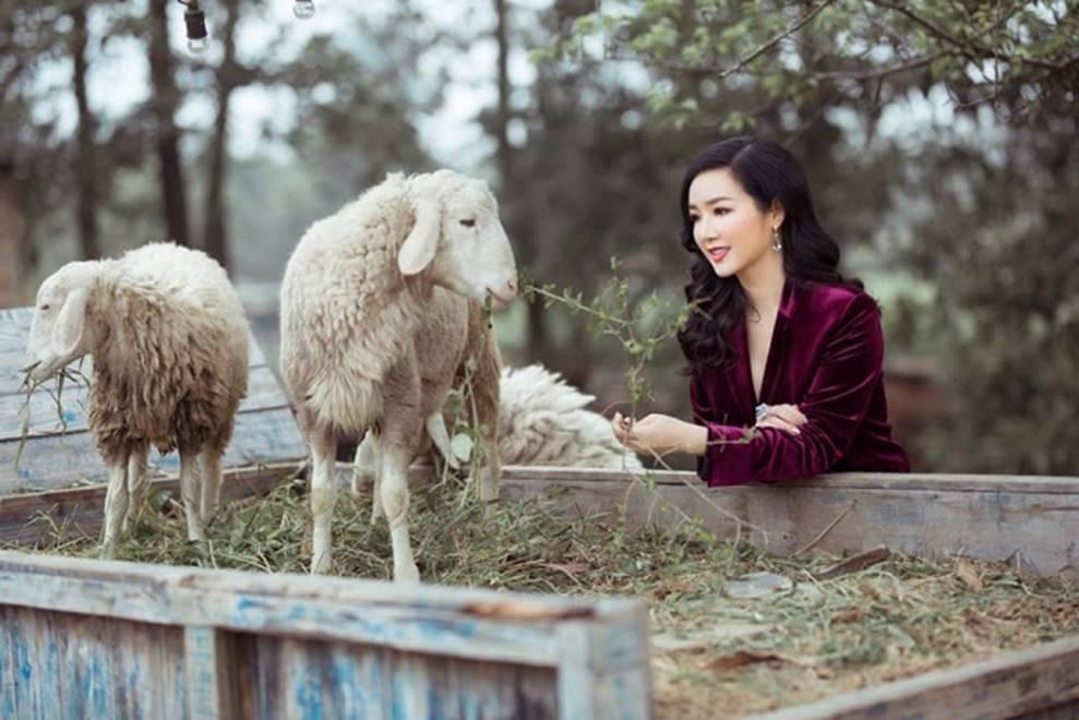 Hoa hậu Đền Hùng Giáng My bình yên vui đùa cùng đàn cừu-4