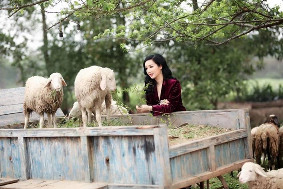 Hoa hậu Đền Hùng Giáng My bình yên vui đùa cùng đàn cừu-8