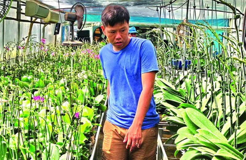Tây Ninh: Vườn lan 'quý tộc' tiền tỷ của chàng thạc sĩ xây dựng-1