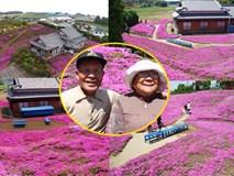 Người đàn ông Nhật Bản dành trọn tình yêu để trồng đồi hoa trước nhà suốt 4 năm để tặng vợ mù lòa