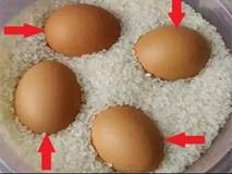 Sau Tết chỉ cần đặt 1 quả trứng vào trong thùng gạo theo cách này, kết quả sẽ khiến bạn ngỡ ngàng
