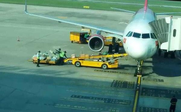 Clip nhân viên sân bay Đà Nẵng ném hành lý hành khách-1