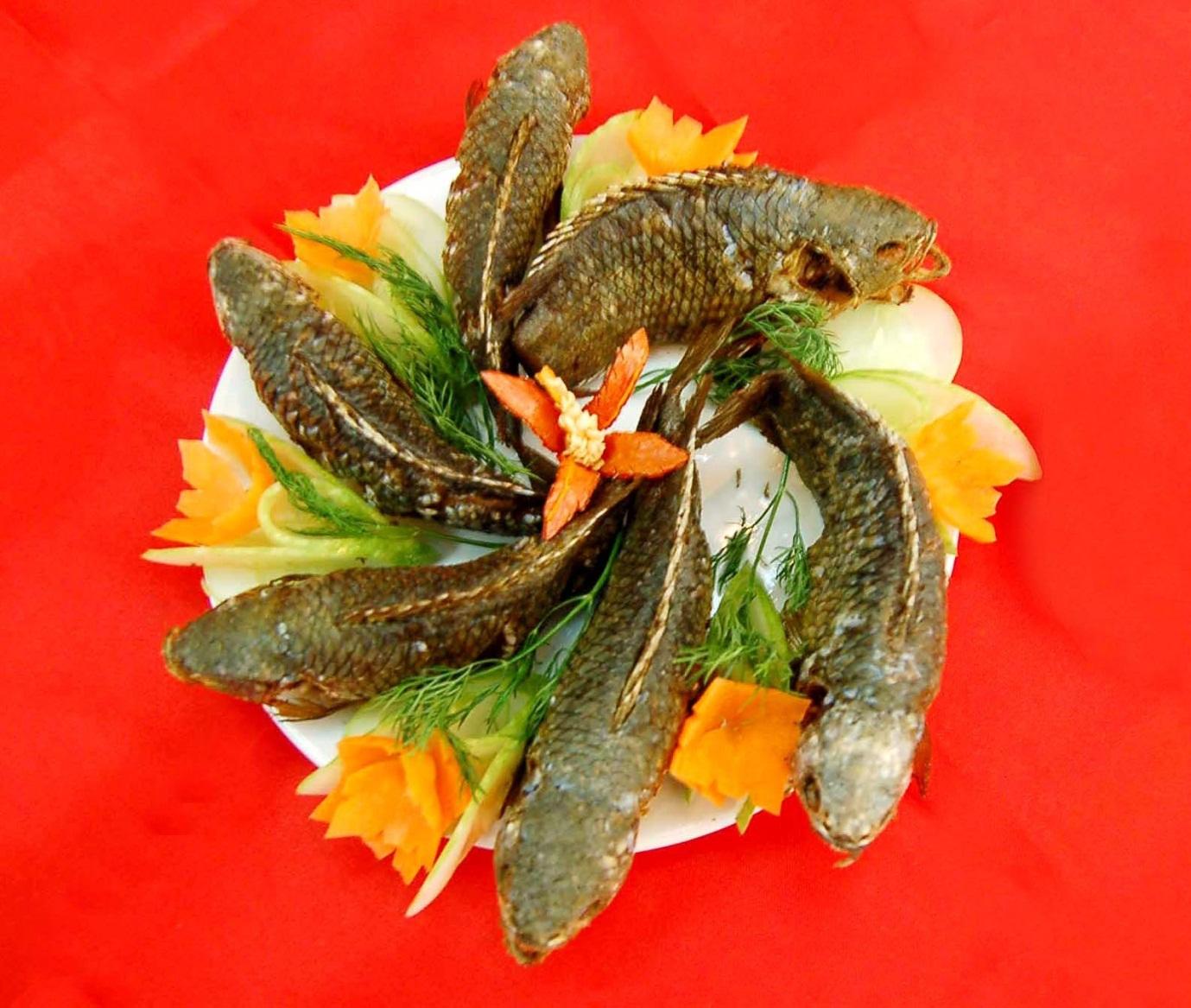 Cá cửng: Đặc sản chỉ dành cho vua, siêu quý hiếm ở đất Ninh Bình-4
