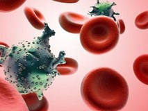 Làm việc này 5 lần/tuần để giảm nguy cơ mắc 13 loại ung thư, đặc biệt là ung thư gan