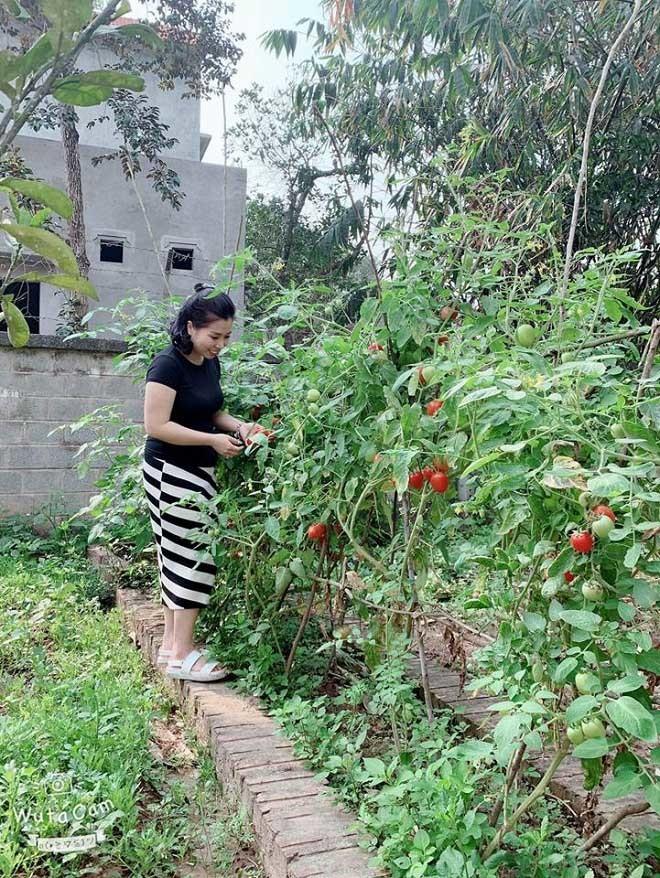 Cơ ngơi hoành tráng với nhà vườn rộng rãi của diễn viên Hồng Đăng-8