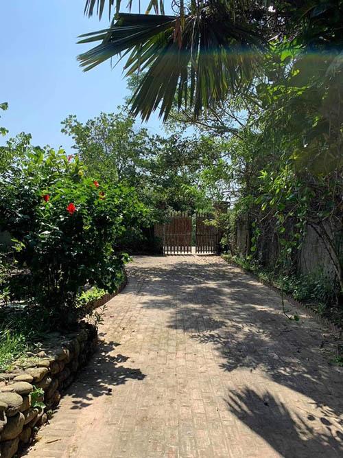 Cơ ngơi hoành tráng với nhà vườn rộng rãi của diễn viên Hồng Đăng-1