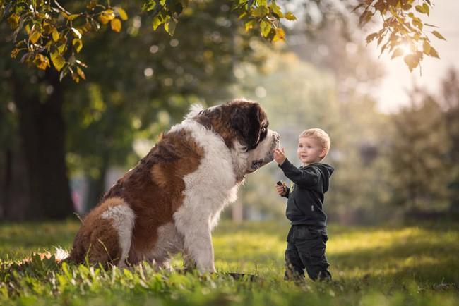 Bộ ảnh đẹp đến nao lòng của các bé chụp cùng thú cưng khổng lồ khiến ai nấy đều phải ngẩn ngơ, trầm trồ-1