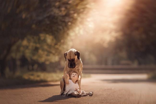 Bộ ảnh đẹp đến nao lòng của các bé chụp cùng thú cưng khổng lồ khiến ai nấy đều phải ngẩn ngơ, trầm trồ-12