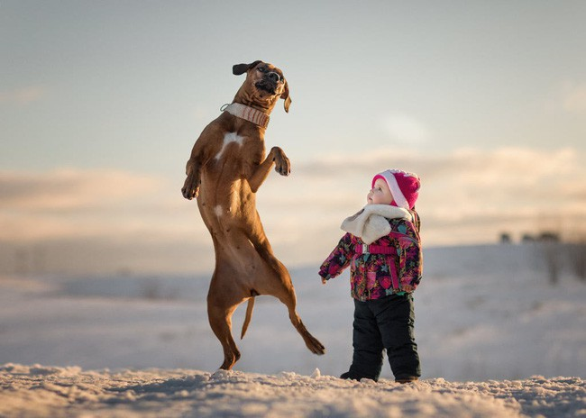 Bộ ảnh đẹp đến nao lòng của các bé chụp cùng thú cưng khổng lồ khiến ai nấy đều phải ngẩn ngơ, trầm trồ-3