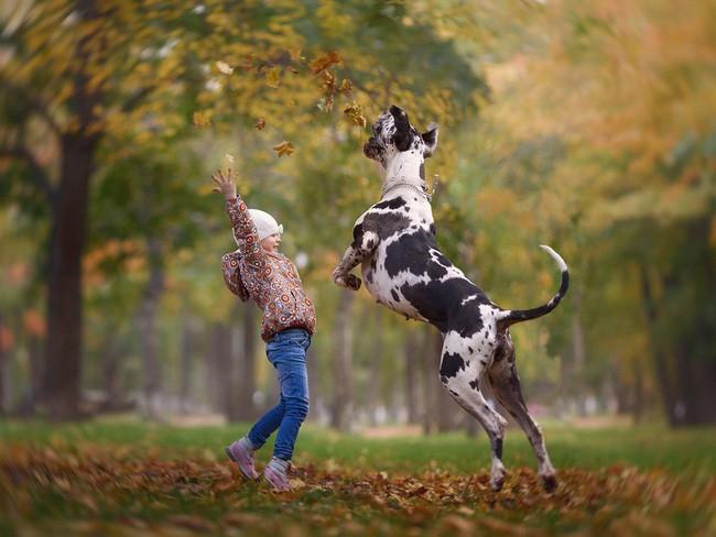 Bộ ảnh đẹp đến nao lòng của các bé chụp cùng thú cưng khổng lồ khiến ai nấy đều phải ngẩn ngơ, trầm trồ-6