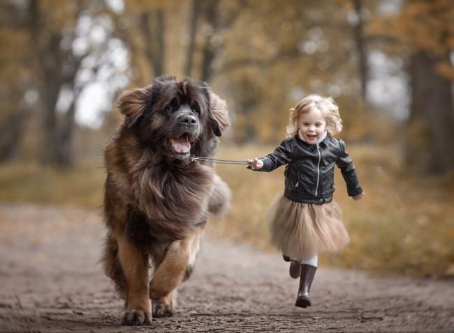 Bộ ảnh đẹp đến nao lòng của các bé chụp cùng thú cưng khổng lồ khiến ai nấy đều phải ngẩn ngơ, trầm trồ-8