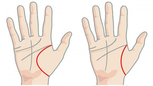 5 dấu hiệu tướng học chỉ xuất hiện ở bàn tay của người phụ nữ mệnh giàu số sướng, hôn nhân viên mãn-2