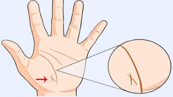 5 dấu hiệu tướng học chỉ xuất hiện ở bàn tay của người phụ nữ mệnh giàu số sướng, hôn nhân viên mãn-3