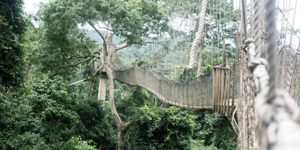 Việt Nam góp 2 đại diện trong top những cây cầu đáng sợ nhất thế giới-15