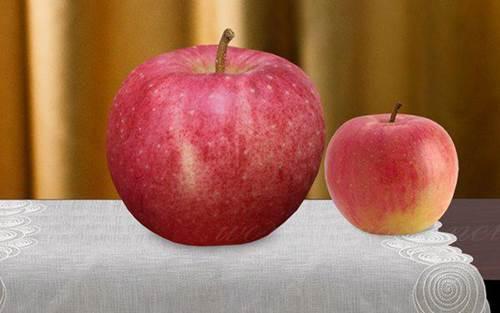 Choáng với 10 loại trái cây đắt nhất thế giới, 1 quả chuối có giá hơn 200 triệu đồng-2