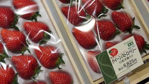 Choáng với 10 loại trái cây đắt nhất thế giới, 1 quả chuối có giá hơn 200 triệu đồng-6