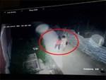 Xem lại camera gắn bên ngoài nhà, thấy cảnh rợn người lúc nửa đêm-1
