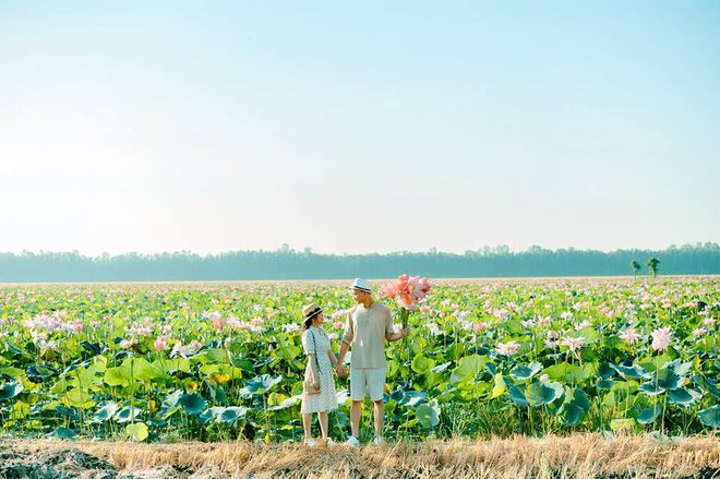 Đã lùng ra địa chỉ cánh đồng sen rộng bát ngát tại An Giang: Thiên đường sống ảo là đây chứ đâu nữa!-5