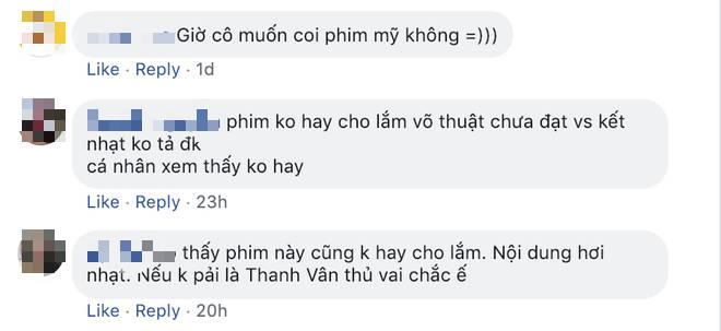 Chiêu cao của Ngô Thanh Vân: Điều gì ẩn sau vụ Hai Phượng vươn ra Hollywood nhưng nhiều fan Việt vẫn chê dở?-2