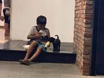 Câu chuyện về cậu bé đường phố chia sữa cho chú chó nhỏ khiến dân mạng suy ngẫm về giá trị của tình yêu thương