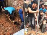 Sang nhà hàng xóm chơi, cụ bà 79 tuổi bị 2 con chó béc giê cắn 30 nhát phải nhập viện cấp cứu-2