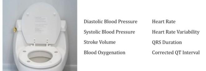 Bồn cầu cao cấp có khả năng đo nhịp tim khi người dùng đi trút bầu tâm sự, tại sao không?-2