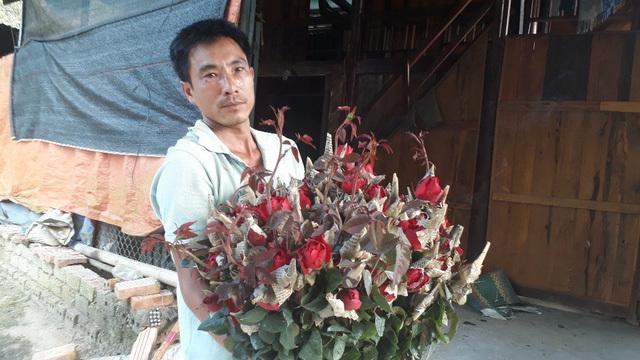 Rời Thủ đô lên phố núi trồng hoa hồng, chàng trai rinh gần 1 tỷ mỗi năm-5