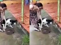 Người phụ nữ chặt chân chó khiến dân mạng sôi sục