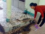 Bác sĩ phóng xe máy đến bìa rừng giúp sản phụ người Dao vượt cạn-4