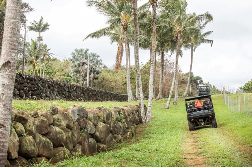 Bên trong biệt phủ bí mật của CEO Facebook ở Hawaii-3