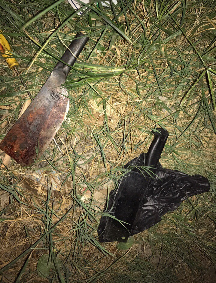 Nghịch tử chém chết cả nhà luôn trong tình trạng kích động, la hét sau nhiều giờ bị bắt giữ-4