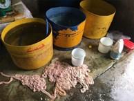 Kinh hãi hàng trăm kg nội tạng động vật hôi thối sơ chế cạnh khu vực bãi rác ở Đà Nẵng