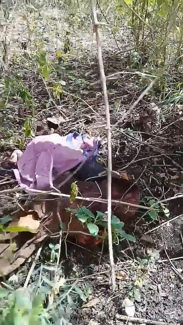 Cảnh tượng gây ám ảnh: Bé gái sơ sinh không một mảnh vải che thân bị bỏ rơi, côn trùng bu cắn khắp cơ thể-1